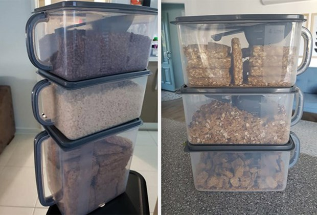 The All New Kmart 4 Kitchen Storage Container Nearly Sells