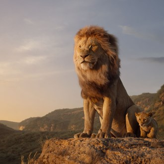 /media/13612/19-04-11-lion-king-square.jpg