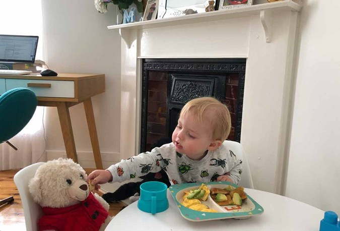 Franki's toddler, Louis, having a teddy bears picnic. Scrambled eggs, avocado on wholemeal toast. He has a small cup of S-26 Toddler milk with his lunch.