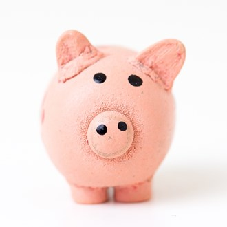 /media/1595/piggy-bank-square.jpg