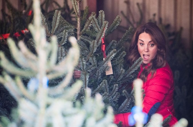 Kate Middleton carried out a royal engagement at Peterley Manor Farm in Buckinghamshire on Wednesday, where she helped schoolkids pick out Christmas trees. Image: Getty