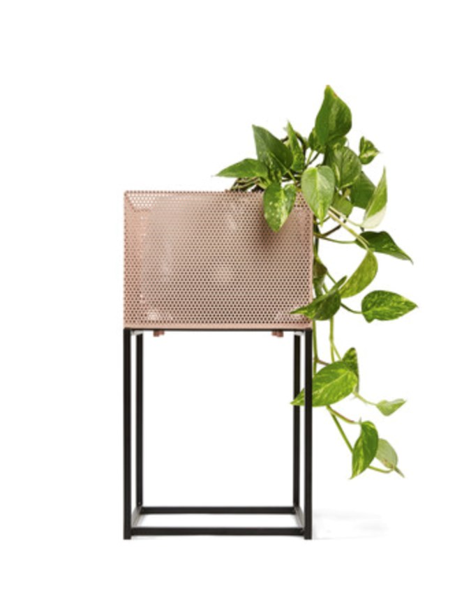 The blush plant stand (credit kmart)