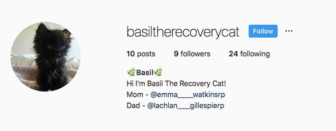 Basil's Instagram page with Emma and Lachy listed as 'Mom' and 'Dad'