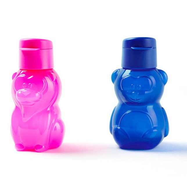 Animal Eco Bottle, Bear and Lion 350m